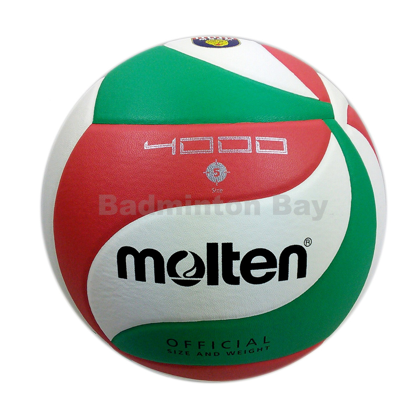 Molten V5M4000 Official Size 5 Volleyball